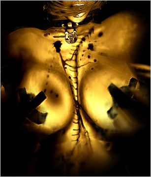 erotic bdsm story