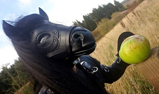 Pony Play and Ponyboy in a field with an apple.