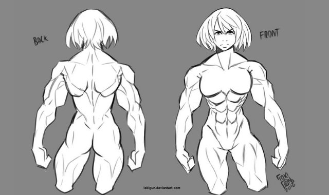 Study Female Muscle Anatomy by Jokigun. Stock Image. Deviant Art