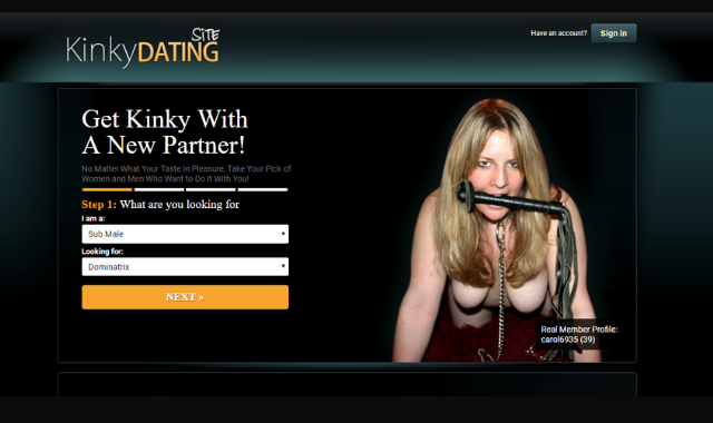 kinkydatingsite review screenshot of front cover